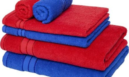 PTK Towel Drive for Homeless College Students